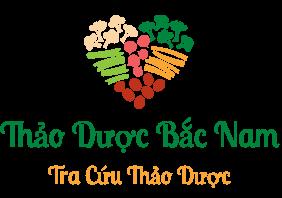 Tra cứu dược liệu Việt Nam