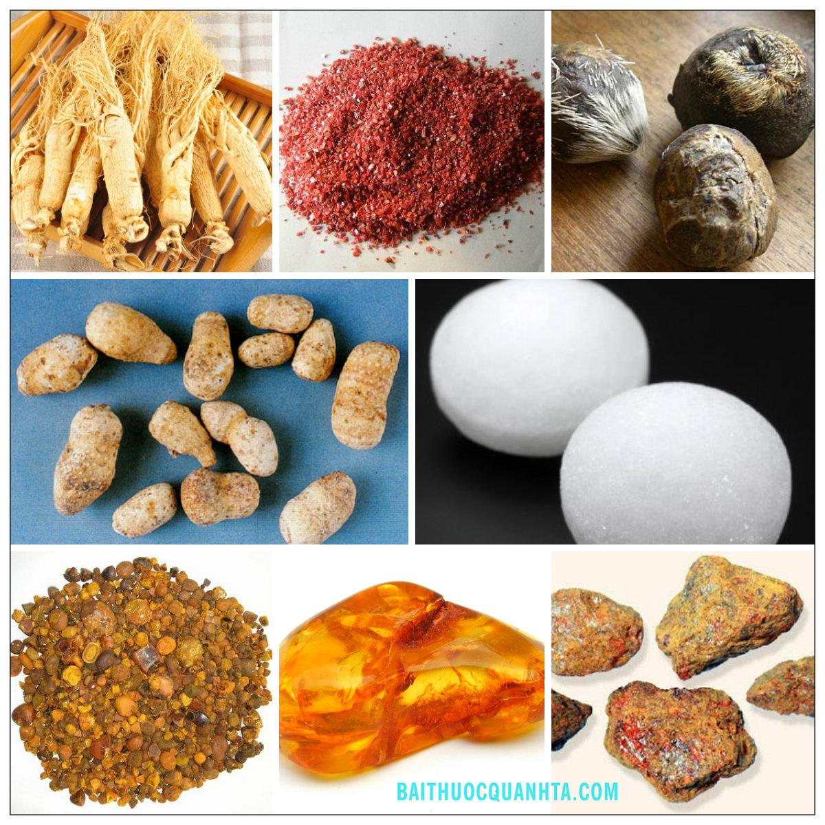 Một số vị thuốc trong bài chí bảo đan