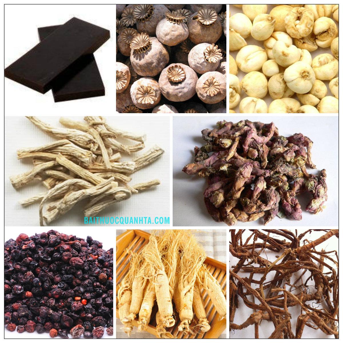 Một số vị thuốc trong bài cửu tiên tán