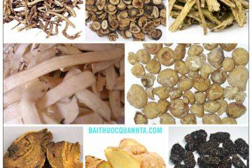 Bài thuốc Đại sài hồ thang chữa táo bón, buồn nôn, viêm túi mật, sỏi mật 1