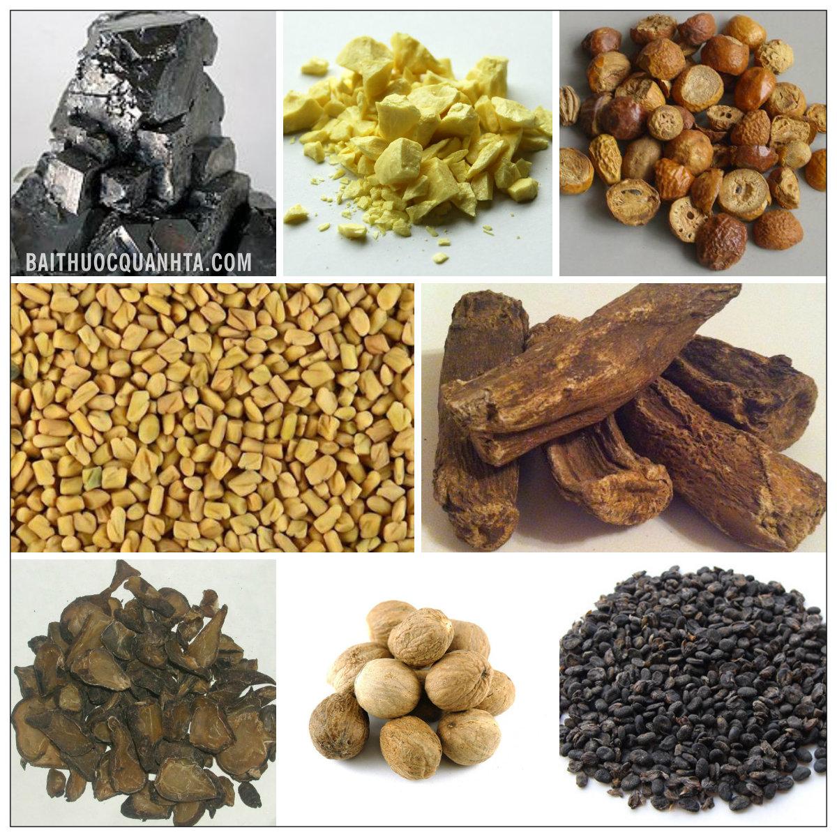 Một số vị thuốc trong bài hắc tích đan