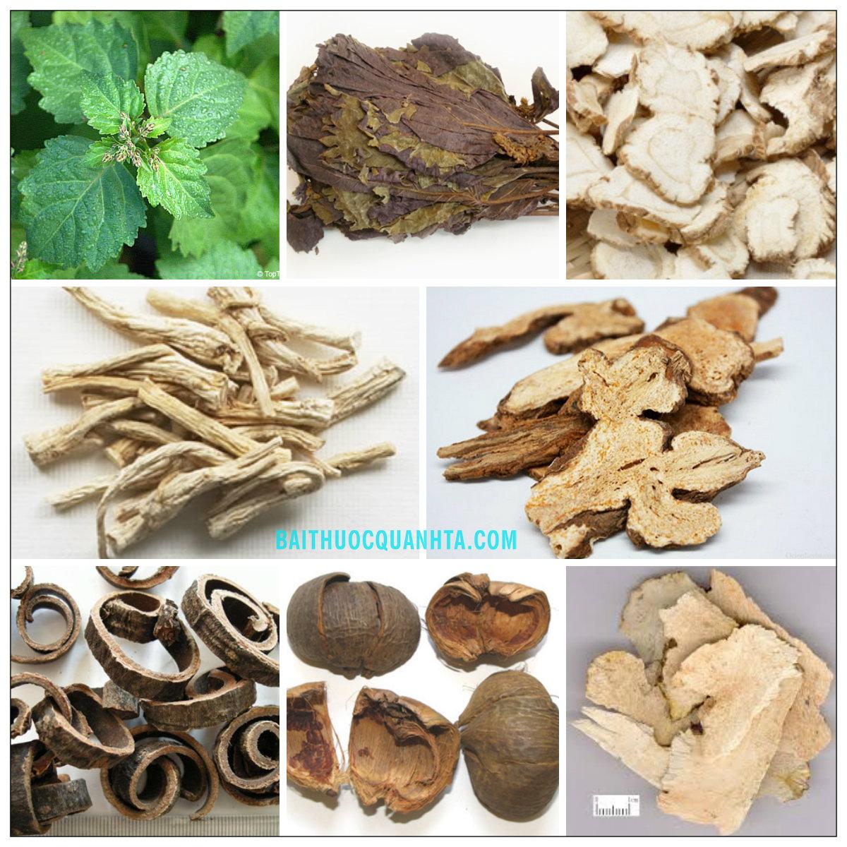 Một số vị thuốc trong bài hoắc hương chính khí tán
