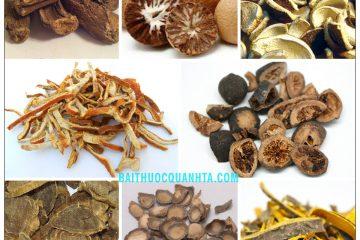 Bài thuốc Mộc hương binh lang hoàn chữa đau bụng, kiết lỵ, táo bón 1